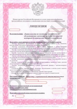 Образец лицензии МЧС лицевая сторона